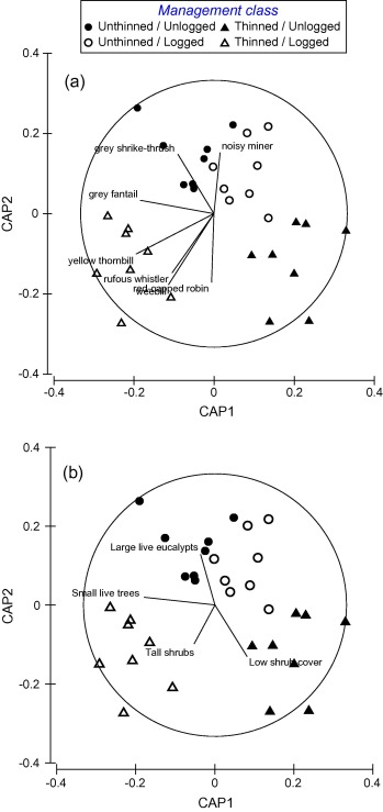 Long Term Thinning And Logging In Australian Cypress Pine Forest