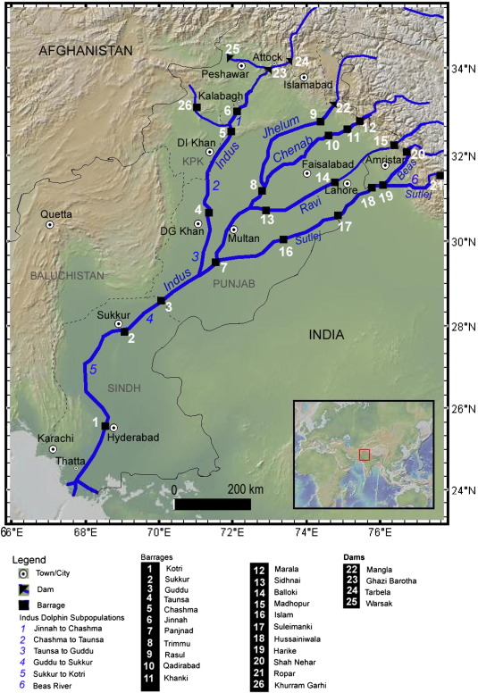 Review of status, threats, and conservation management options for on himalayan mountains on map, himalayas on map, yangzte river on map, deccan plateau on map, bangladesh on map, lena river on map, persian gulf on map, yellow river on map, kashmir on map, gulf of khambhat on map, irrawaddy river on map, ganges river on map, indian ocean on map, eastern ghats on map, japan on map, great indian desert on map, jordan river on map, krishna river on map, gobi desert on map, aral sea on map,