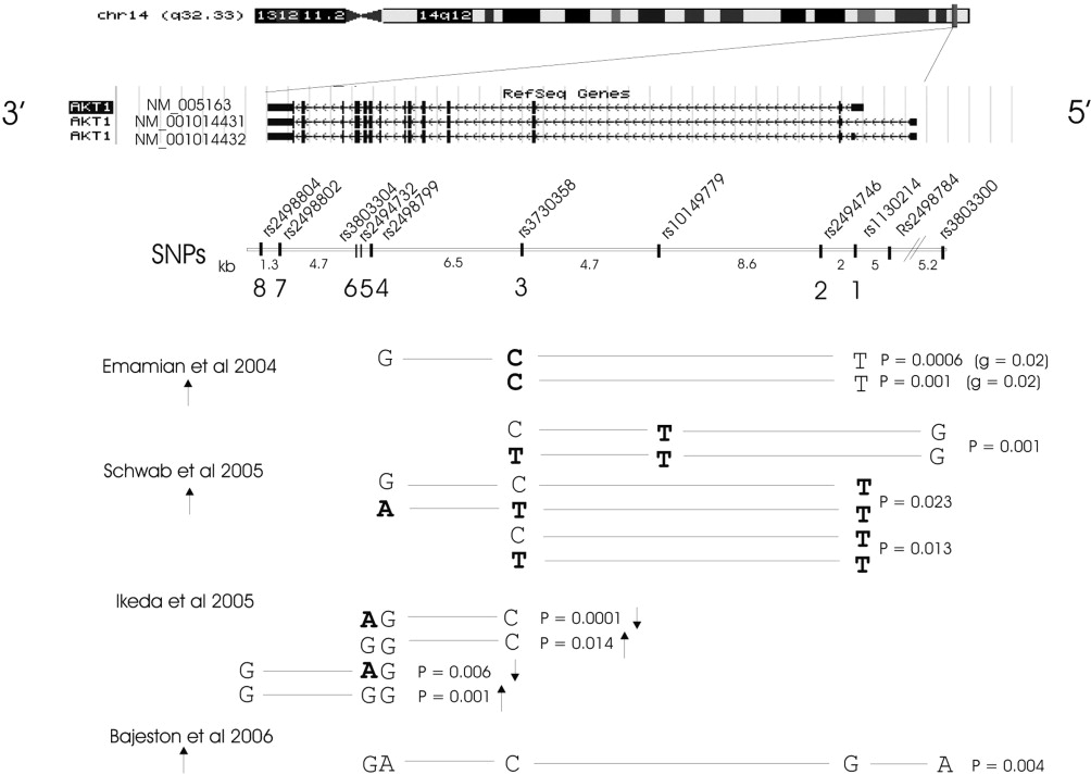AKT1 Is Associated with Schizophrenia Across Multiple Symptom