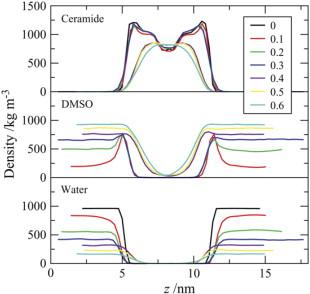 The Permeability Enhancing Mechanism of DMSO in Ceramide Bilayers