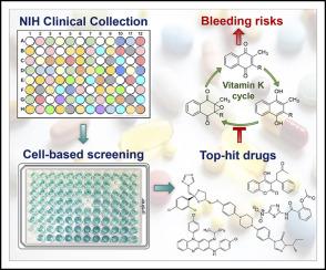 基于细胞的高通量筛网识别出通过偏离维生素K循环而导致出血障碍的药物