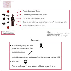 gastric cancer hemolytic anemia)