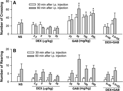 Antihyperalgesic effect of systemic dexmedetomidine and