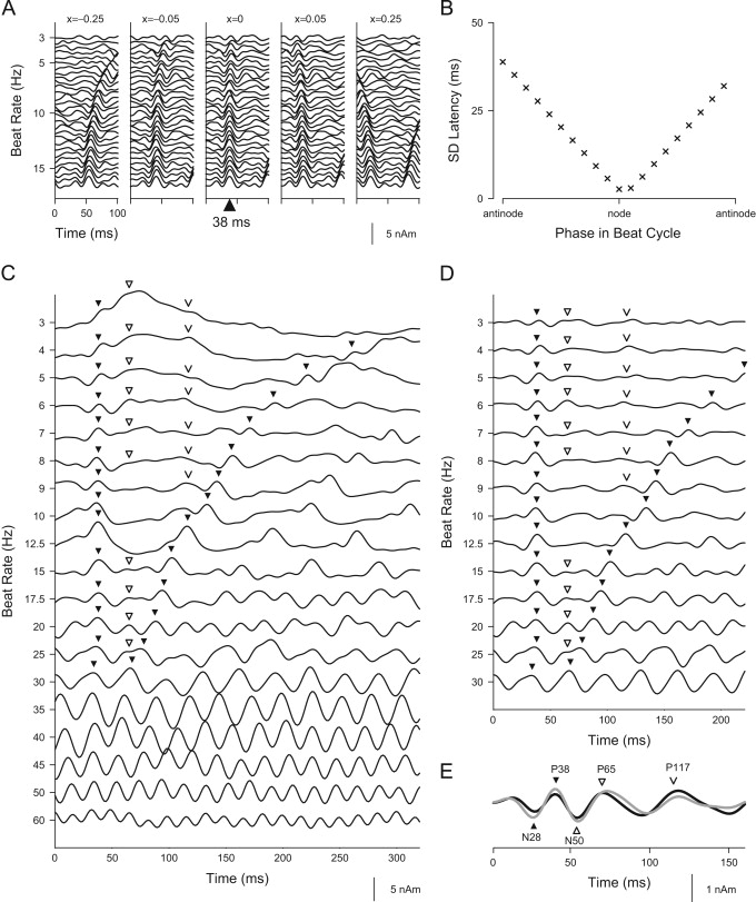 sound envelope encoding in the auditory cortex revealed by Airplane Fuses download full size image