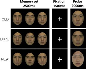 Facial recognition introduction false memory