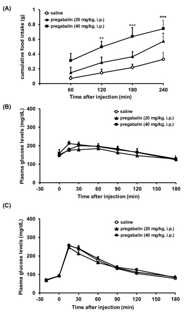 Pregabalin increases food intake through dopaminergic systems in the