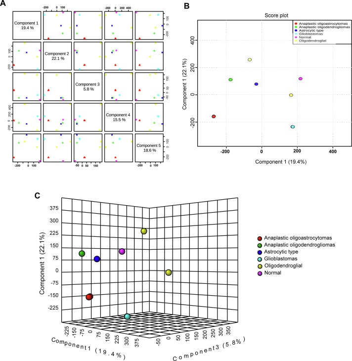 LCN2-interacting proteins and their expression patterns in brain