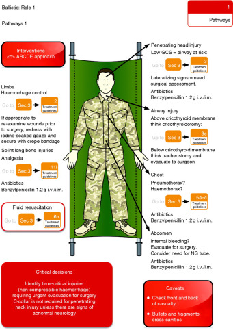 Lessons from the battlefield: human factors in defence anaesthesia