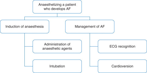 b7d59a58a6c Standards for simulation in anaesthesia: creating confidence in the ...