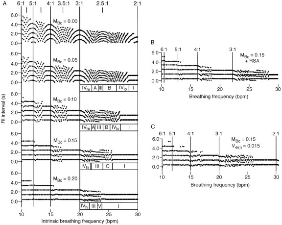 Inspiratory timing during anaesthesia: a model of cardioventilatory