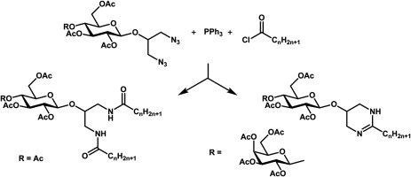 N-linked glycolipids by Staudinger coupling of glycosylated