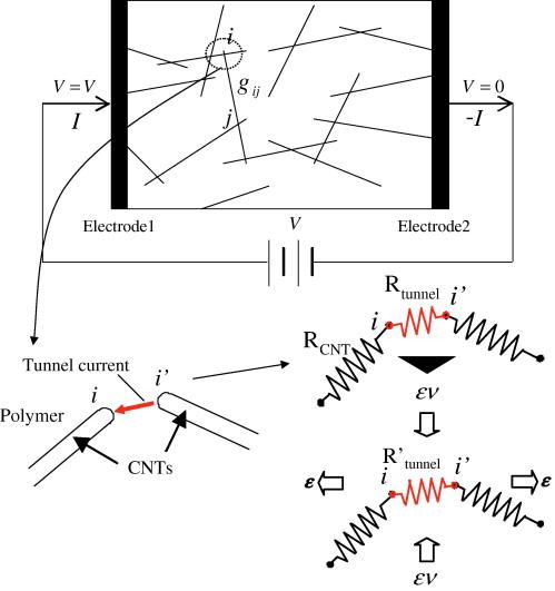 Investigation On Sensitivity Of A Polymercarbon Nanotube Composite