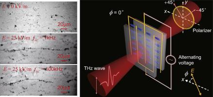 Terahertz dielectric anisotropy enhancement in dual