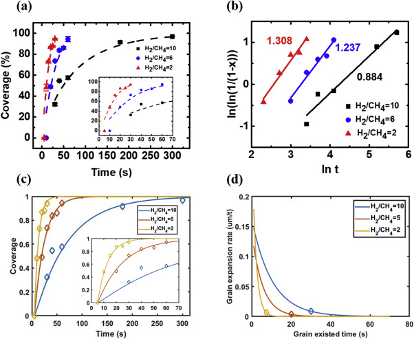 Nucleation and growth dynamics of graphene grown through low