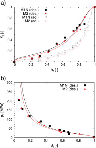 Modelling Of Isothermal Coupled Moisture Ion Transport In
