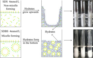 Effects of surfactant micelles and surfactant coated nanospheres graphical abstract ccuart Gallery