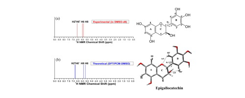 Structural Analysis Of Flavonoids In Solution Through Dft 1h Nmr Chemical Shift Calculations Epigallocatechin