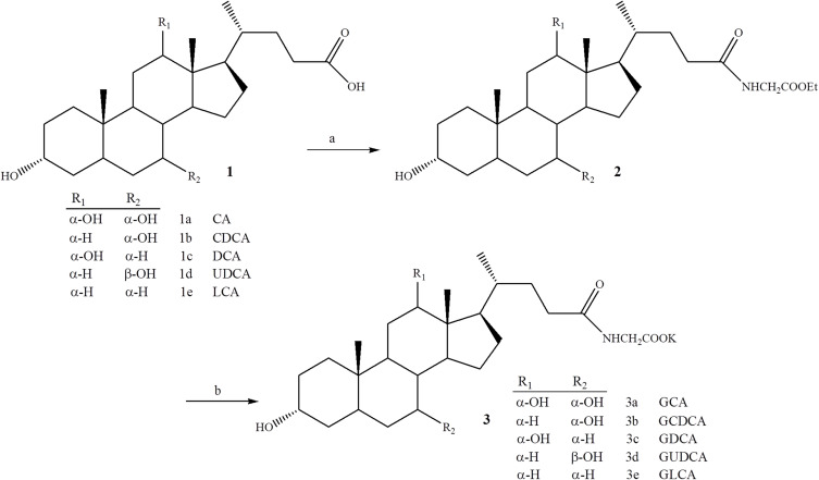 Improved synthesis of glycine, taurine and sulfate