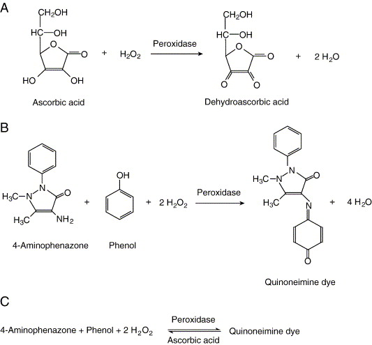 Mechanism of ascorbic acid interference in biochemical tests