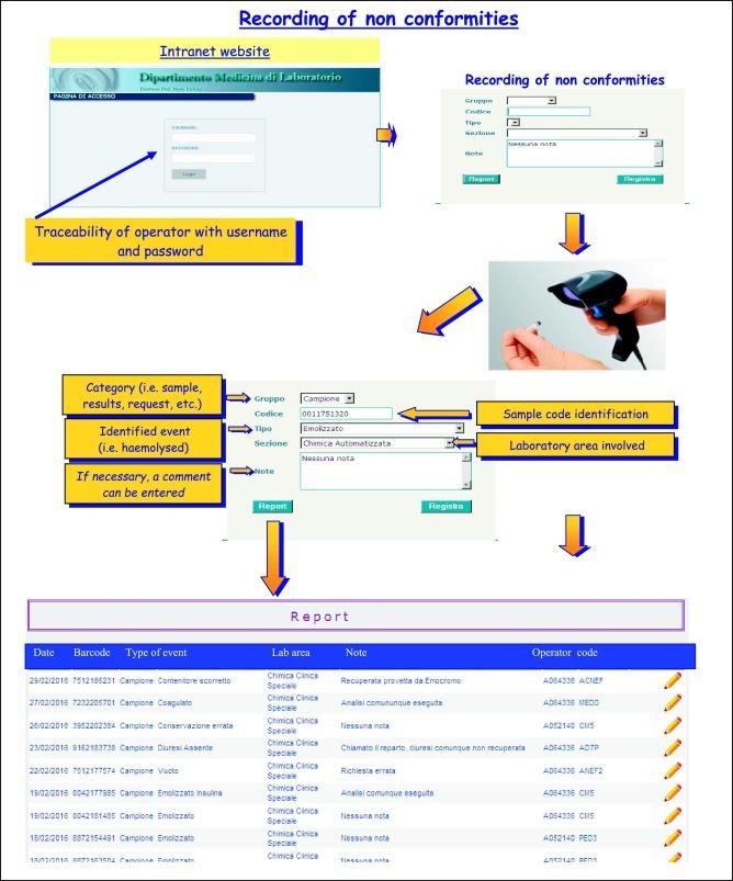 campione volume 17 pdf download