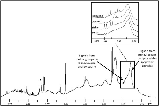 A novel NMR-based assay to measure circulating