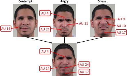Statiscal manual of facial expressions