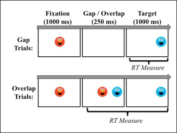 Individual differences in nonverbal prediction and