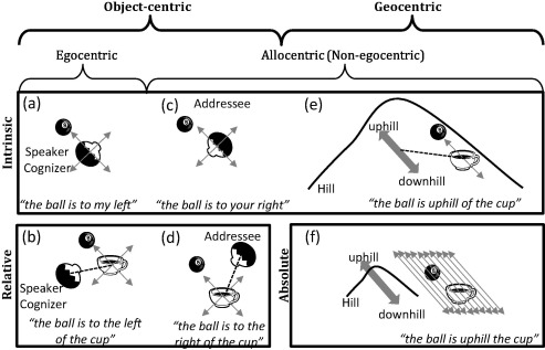 Frames of reference in spatial language acquisition - ScienceDirect