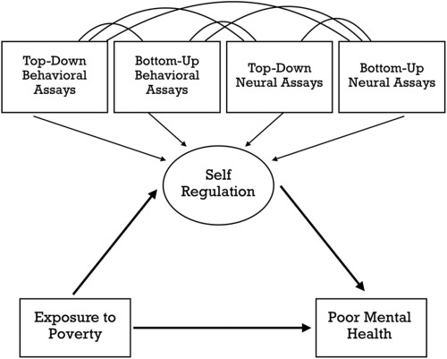 Poverty As Disability Neuroscience Poor >> Poverty And Self Regulation Connecting Psychosocial Processes