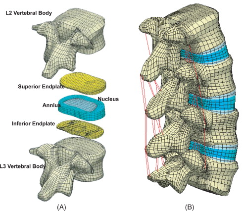 Biomechanical Study Of Lumbar Spine With Dynamic Stabilization