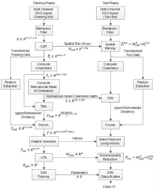 CSP-TSM: Optimizing the performance of Riemannian tangent space