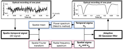 An adaptive spatio-temporal Gaussian filter for processing
