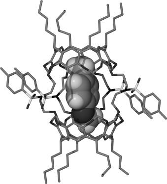 Metallo Supramolecular Capsules