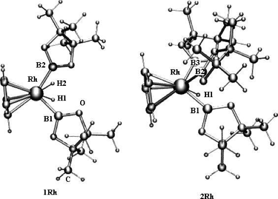 Transition Metal Borane Complexes