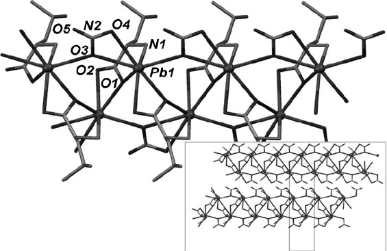 Leadii Carboxylate Supramolecular Compounds Coordination Modes