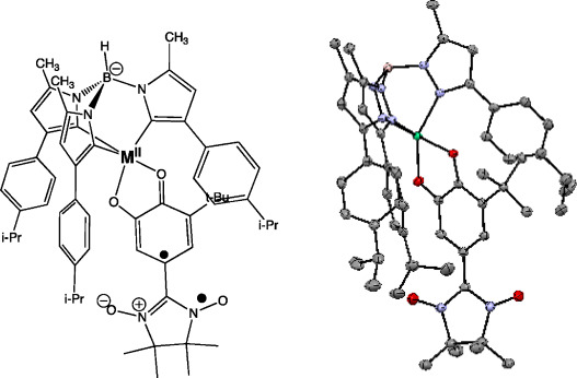 Transition Metal Complexes Of Donoracceptor Biradicals
