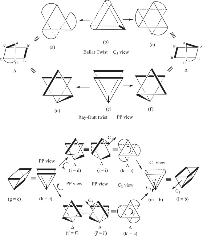 The Handedness Structure Of Octahedral Metal Complexes With