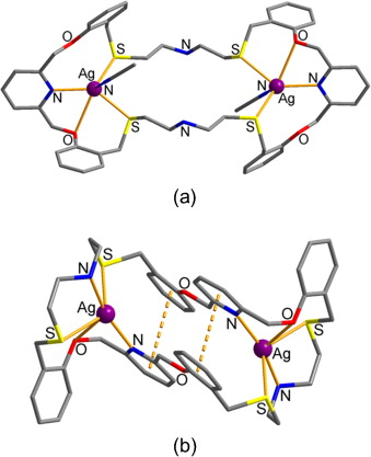 Recent Developments In The Thiamacrocyclic Chemistry Of The Latter D