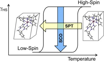 Symmetry-breaking structural phase transitions in spin