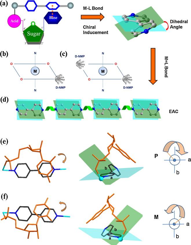 Supramolecular Self Assembly Of Nucleotide Metal