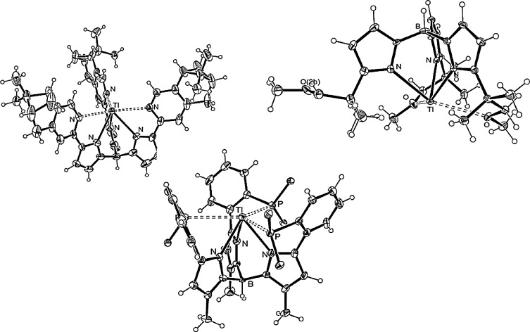 Chemistry Of The P Block Elements With Anionic Scorpionate Ligands