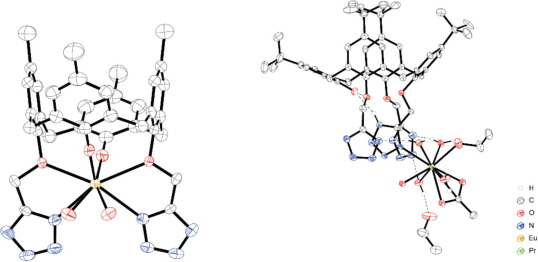 Coordination Chemistry Of F Block Metal Ions With Ligands Bearing