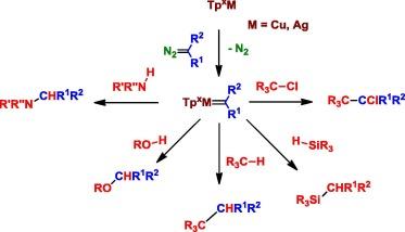 Trispyrazolylborate coinage metals complexes: Structural