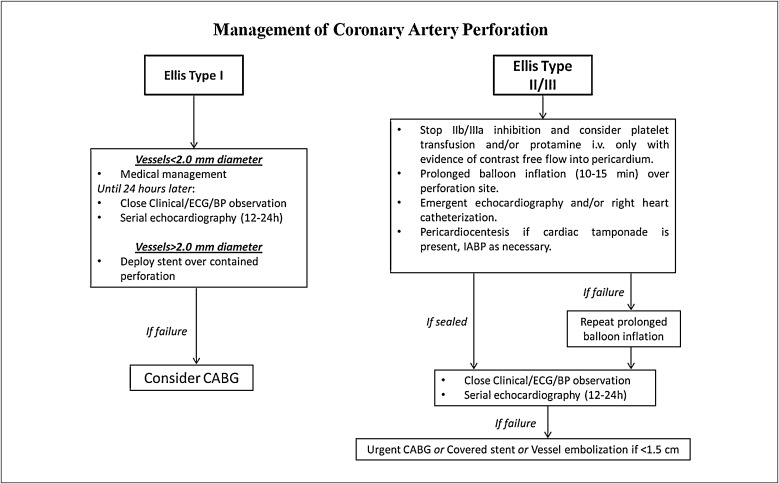 Coronary Artery Perforation How To Treat It Sciencedirect