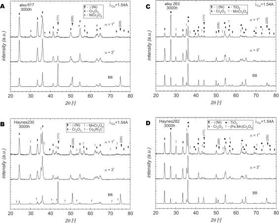 Neural network modelling studies of steam oxidised kinetic behaviour