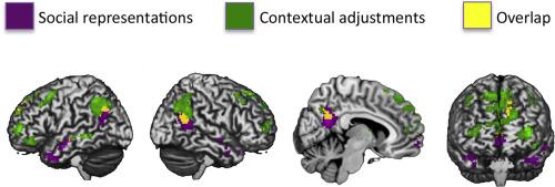 Brain Representations Of Social >> Social Representations And Contextual Adjustments As Two Distinct