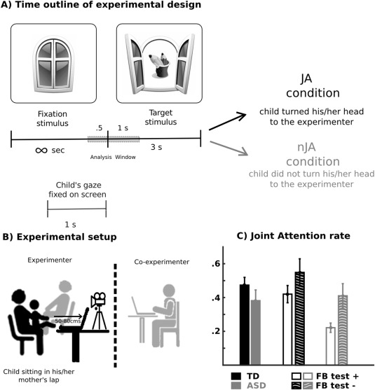 Beta oscillations precede joint attention and correlate with