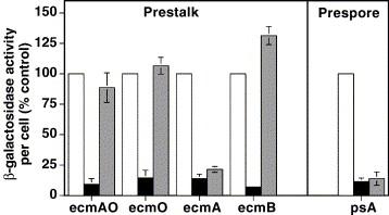 New prestalk and prespore inducing signals in Dictyostelium