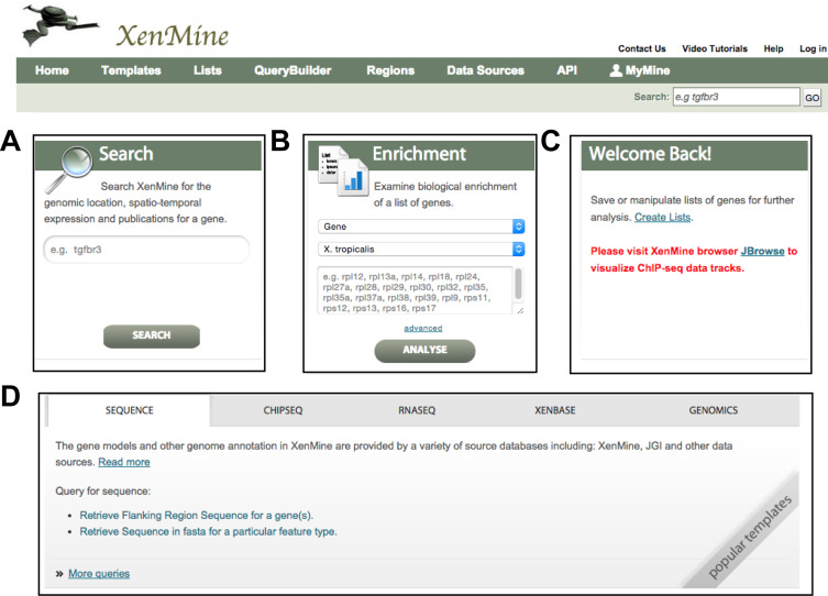 XenMine: A genomic interaction tool for the Xenopus