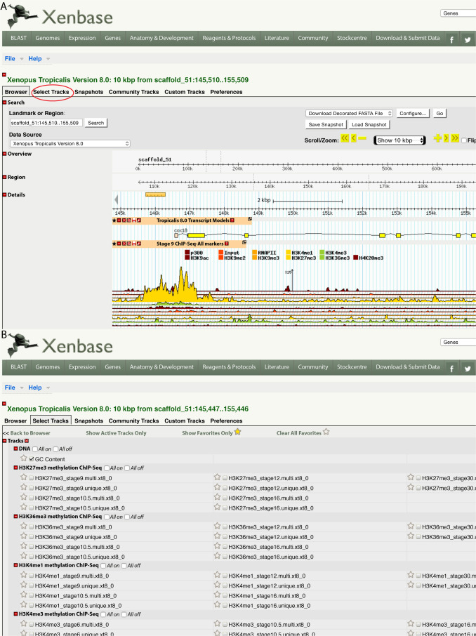 Xenopus genomic data and browser resources - ScienceDirect